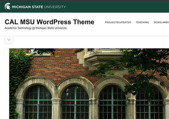 While working as a Web Developer for the College of Arts & Letters, I planned, designed and implamented many WordPress templates for faculty and college associated grant programs.